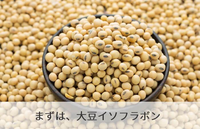 まずは、大豆イソフラボン